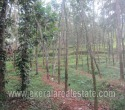 Rubber Plantation for Sale in Vembayam Trivandrumfd (1)