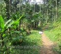 5 Cents Land for Sale in Vellanad Trivandrum jh (1)