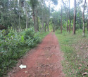60 Cents Land for Sale near Neyyar Dam Trivandrum Kerala fn (2)