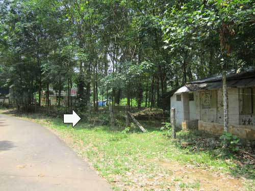 78 Cents Land for Sale at Vellanad Trivandrum Kerala g (1)