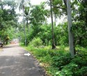 20 Cents Land Suitable for House Tourist Cottages for Sale at Kovalam Trivandrum Kerala se (9)