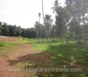 Above 1 Acre Land for Sale at Vembayam Trivandrum Kerala gh (1)