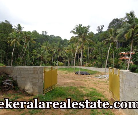 Residential House Plots Sale Near Vattappara Trivandrum Vattappara Real Estate Properties  Kerala Real Estate