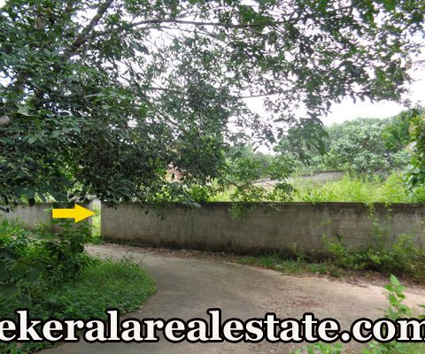 6.-25-Cent-Residential-Land-Sale-at-Pullanivila-Kariavattom-Trivandrum-Kariavattom-Real-Estate-Properties-Kerala-Real-Estate-Trivandrum-