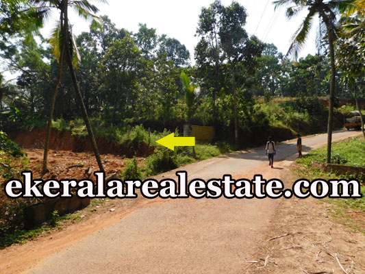50 Cents Residential Land Plots Sale at at Uriyacode Junction Vellanad Trivandrum