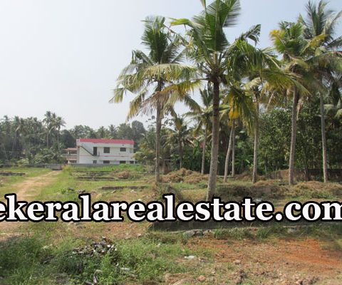 Residential House Plots Sale at Anayara Pettah Trivandrum Anayara Real Estate Properties Pettah  Land Plots Sale