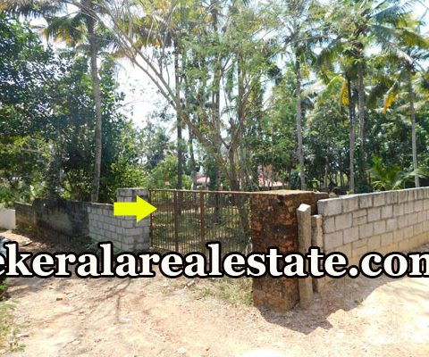 10 Cents Residential Land Sale at Pullanivila Kariavattom Trivandrum Kariavattom Real Estate Properties