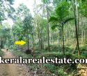 82 Cents Rubber Land For Sale at Malayilkada Manchavilakom Neyyattinkara Trivandrum Price Below 50000 Per Cent