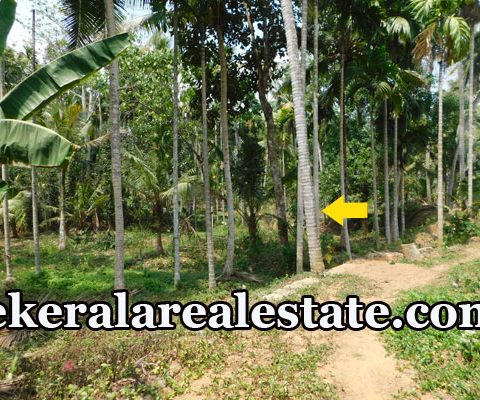22 Cents Residential Land Sale at Karakulam Mullasery Enikkara Peroorkada Trivandrum
