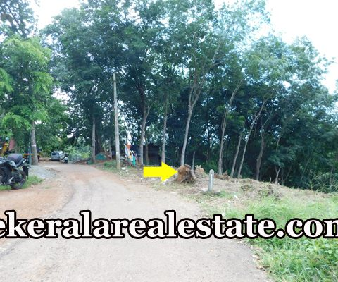 34 Cents Residential Land Sale at Pidaram Thachottukavu Peyad Price Below3.5 Lakhs Per Cent