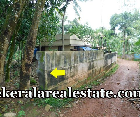30 Cents Land for Sale at Puliyarakonam Price Below 1.25 Lakhs Per Cent