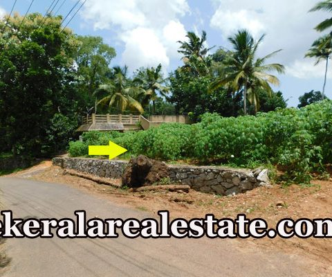Residential Land Sale at Panthalacode Vattappara Trivandrum Price Below 1.9 Lakhs Per Cent