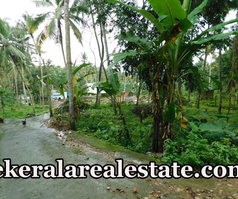 10 Cent Residential Land Sale at Vilappilsala Peyad Trivandrum
