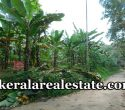 88 Cents Land for Sale at Chennanpara Vithura Trivandrum