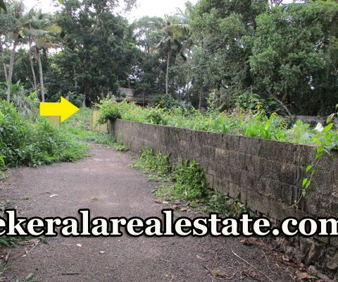 Residential Plots Sale Near Kudappanakunnu Civil Station
