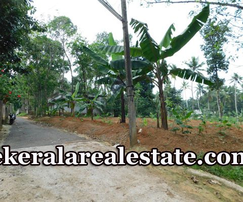 20-Cents-Residential-Land-Plots-Sale-Near-Kattakada-Trivandrum