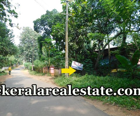 19-Cents-Price-Below-3-Lakhs-Per-Cent-Land-Sale-at-Vavarambalam-Pothencode