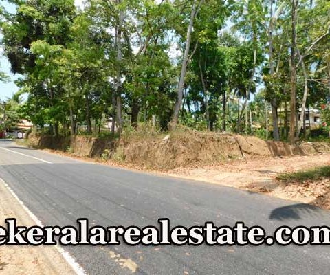Residential-40-Cents-Land-for-Sale-at-Nakranchira-Kattakada1