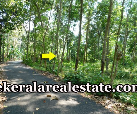 30-Cents-Residential-Land-Sale-at-Satyan-Nagar-Pappanamcode