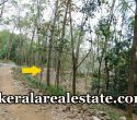 65-Cents-rubber-Land-Sale-at-Pappala-Kilimanoor-Price-Below-1.5-Lakhs-Per-Cent