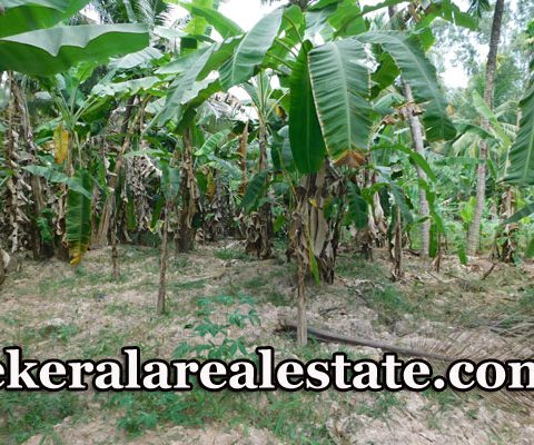 Low-Budget-l-House-Plots-For-Sale-at-Enikkara-Peroorkada