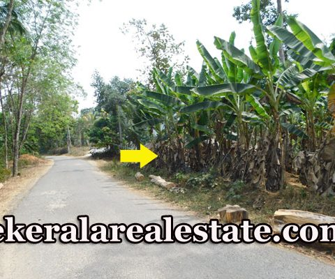 Plots-Price-Below-2-Lakhs-Per-Cent-For-Sale-at-Nellanad-Venjaramoodu