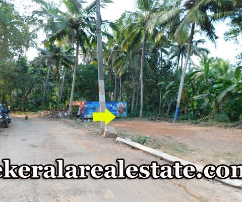 Residential House Plots Sale at Mangattukadavu Thirumala