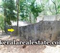 4 Cents Residential Plot Sale at Bhagavathipuram Puliyarakonam
