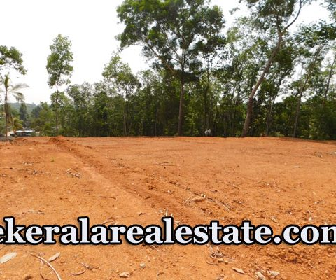 Land For Sale at Palam Junction Attingal Vamanapuram Road