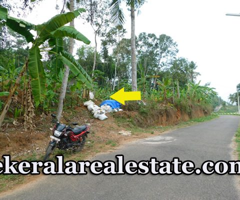 1 Acre 70 Cents Agricultural Farm Land For Sale at Kottampally Kattakada