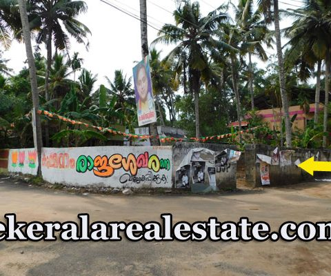 4.5 Cents Residential Plot For Sale at Mannanthala