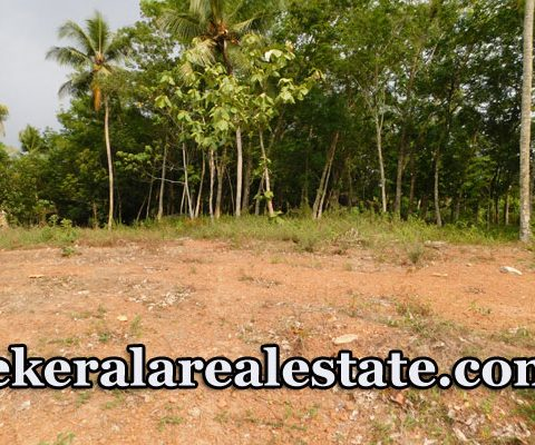 15 Cents Plot Price Below 2.6 Lakhs Per Cent Sale at Kaipady Ennikkara Peroorkada