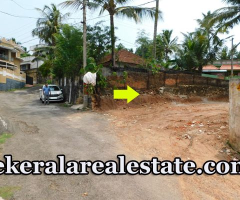 6 Cents Residential Plot For Sale at Mannarathala Lane Valiyavila Thirumala