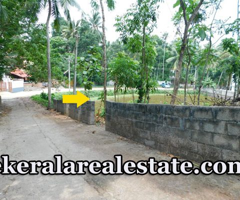 plot for sale at Aramada Thrikkannapuram Thirumala