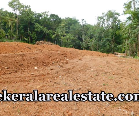 Plot For Sale Near P.A. Aziz College Mullassery Karakulam