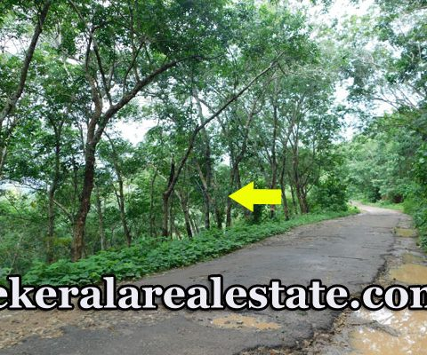 19 Cents Price Below 2 Lakhs Per Cent Land Sale at Vavarambalam