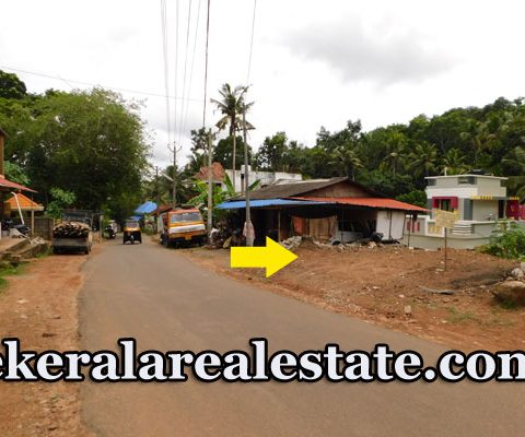 7.25 Cents Main Road Frontage Lland For Sale at Mullassery Karakulam