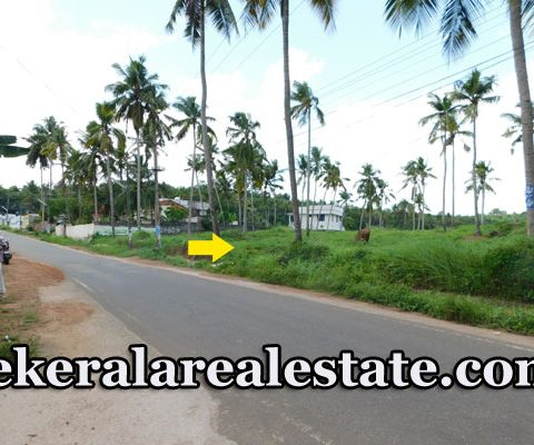 land for sale at pothencode
