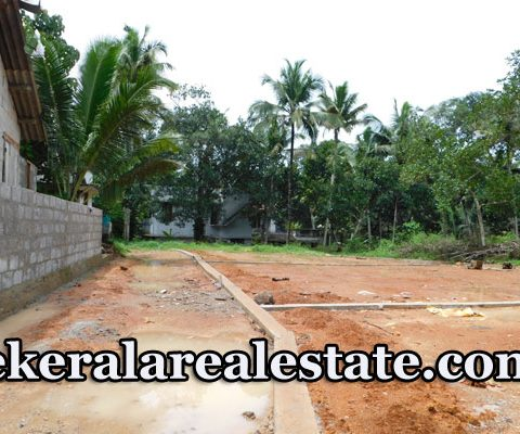 Residential House Plots For Sale Near Peyad Price 2.5 Lakhs per cent