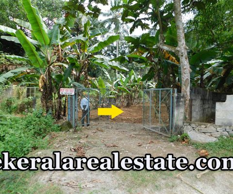 75 cents Residential Plot for Sale at Vembanoor Aruvikkara Trivandrum