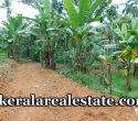 Price 3.5 Lakhs per cent 1.5 Acre Land for sale at Alantharakonam Peyad