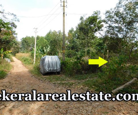 50 Cents Land for Sale at Plathara Karakulam Trivandrum