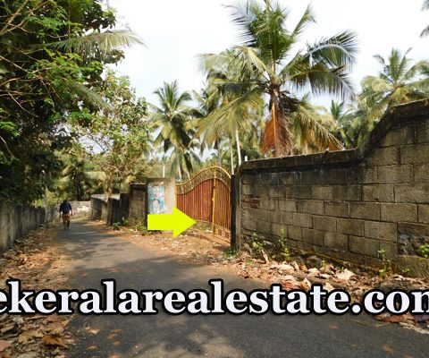 Land For Sale at Beach Road Kovalam