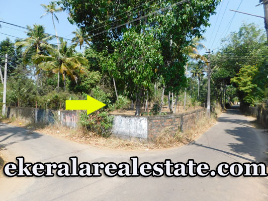 12 Cents House Plot for Sale at Mayyanad Kollam