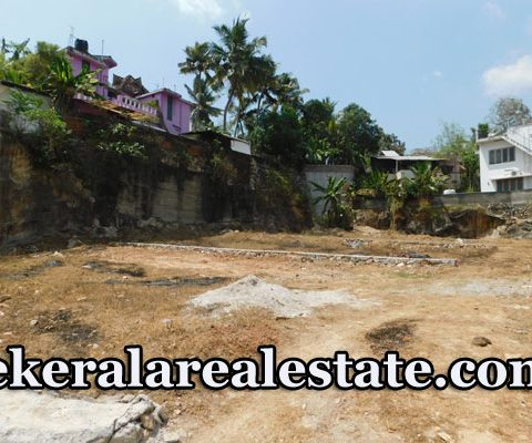 20 Cents Residential House Plot for Sale at Peroorkada Trivandrum