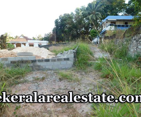6 Lakhs per cent Residential Land For Sale at Pulayanarkotta Trivandrum