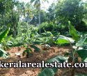 90 Cents Land For Sale at Kalliyoor Vellayani Trivandrum Price Below 1 Lakh Per Cent