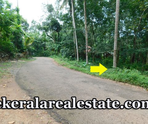 18.5 cents Residential Land For Sale at Pazhakutty Nedumangad Trivandrum